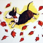 HÖST Konstkort A4 av Lisa Carlstedt  1 st 30:- eller 4 st 100:-