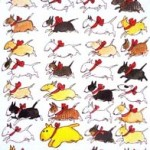 LUSSEBULLE Julkort av Lisa Carlstedt Pris: 10: – st eller 12 st för 100: –