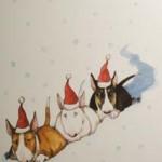 NISSAR Julkort av Lisa Carlstedt Pris: 10: – st eller 12 st för 100: –