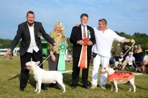 trophy vinnare standard_liten